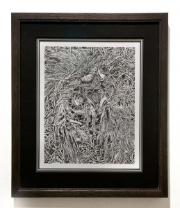 Horkey -  <strong>Hoarfrost</strong> (2011<strong style = 'color:#635a27'></strong>)<bR /> ink and gouache on paper 11 1/4 x 8 5/8 inches (28.58 x 21.91 cm) 17 3/8 x 14 5/8 inches framed