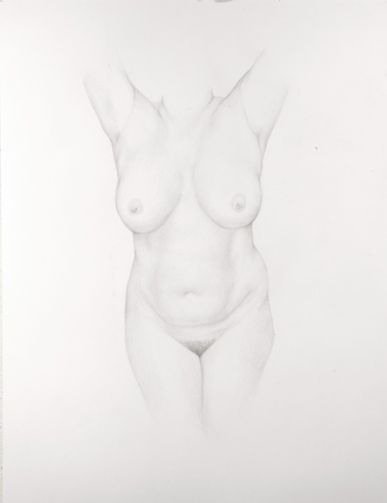 Dan  Witz -  <strong>Torso 2</strong> (2011<strong style = 'color:#635a27'></strong>)<bR /> silverpoint on paper,   18 x 14 inches (45.72 x 35.56 cm)  24.5 x 20 x 1.5 inches, framed