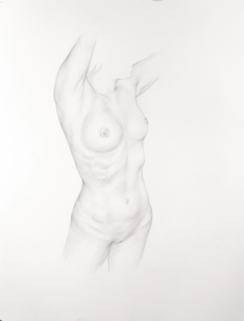 Dan  Witz -  <strong>Torso 3</strong> (2011<strong style = 'color:#635a27'></strong>)<bR /> silverpoint on paper,   18 x 14 inches (45.72 x 35.56 cm)  24.5 x 20 x 1.5 inches, framed