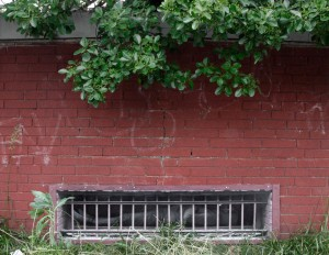 Dan Witz -  <strong>Brickwall</strong> (<strong style = 'color:#635a27'></strong>)<bR />