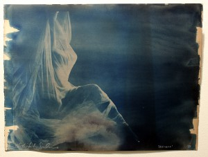 Faith47   -  <strong>Relegare XII</strong> (2015<strong style = 'color:#635a27'></strong>)<bR /> cyanotype prints on archival paper,   19.7 x 26.4 inches  (44 x 57 cm)