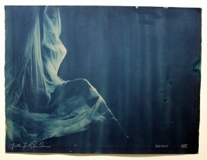 Faith47   -  <strong>Relegare XVII</strong> (2015<strong style = 'color:#635a27'></strong>)<bR />  cyanotype prints on archival paper,   19.7 x 26.4 inches  (44 x 57 cm)