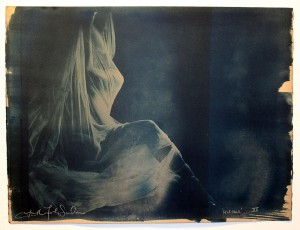 Faith47   -  <strong>Relegare XV</strong> (2015<strong style = 'color:#635a27'></strong>)<bR />  cyanotype prints on archival paper,   19.7 x 26.4 inches  (44 x 57 cm)