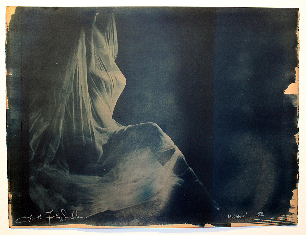 Faith47  &nbsp -  <strong>Relegare XV</strong> (2015<strong style = 'color:#635a27'></strong>)<bR />  cyanotype prints on archival paper,   19.7 x 26.4 inches  (44 x 57 cm)