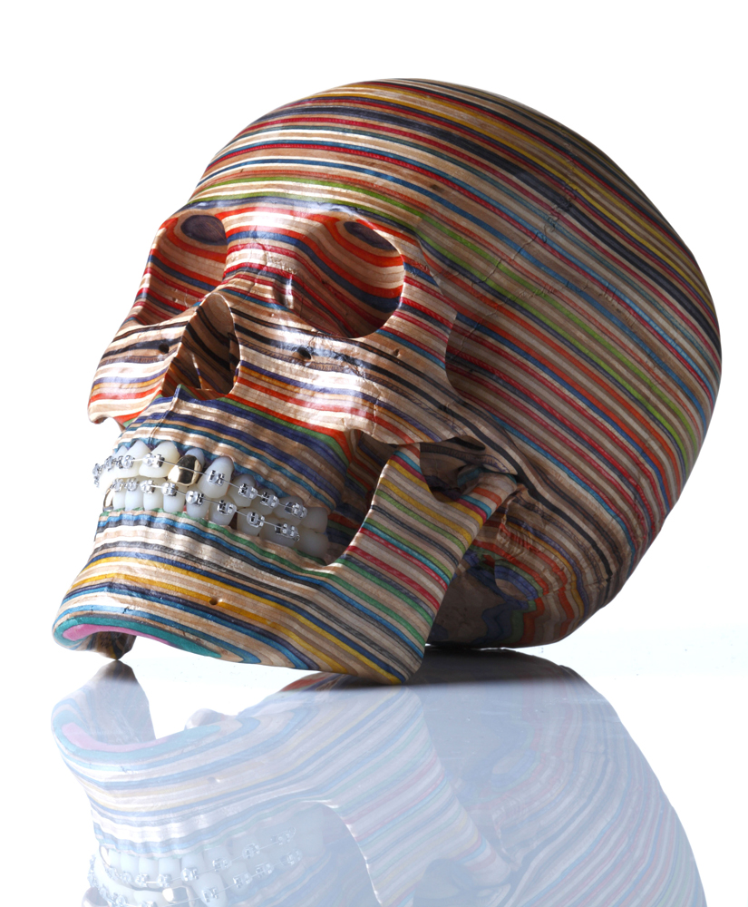 Haroshi  &nbsp -  <strong>Skull (Side view)</strong> (<strong style = 'color:#635a27'></strong>)<bR />