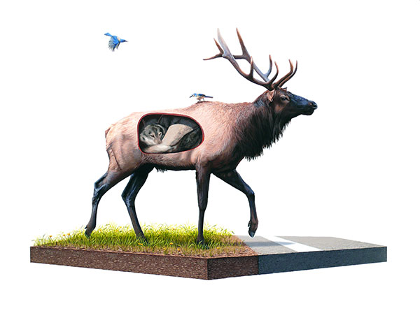 Josh  Keyes -  <strong>Incubate</strong> (2009<strong style = 'color:#635a27'></strong>)<bR /> acrylic on panel,   30 x 40 inches  (76.2 x 101.6 cm)