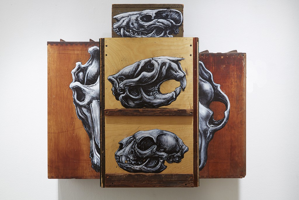 Roa      -  <strong>Cabinet Specula Crania</strong> (2015<strong style = 'color:#635a27'></strong>)<bR /> mixed media,   30.5 x 34 x 11 inches  (77.47 x 86.36 x 27.94 cm)