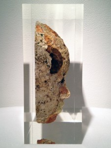 Jason  deCaires Taylor -  <strong>Head 3 (PROFILE)</strong> (<strong style = 'color:#635a27'></strong>)<bR />