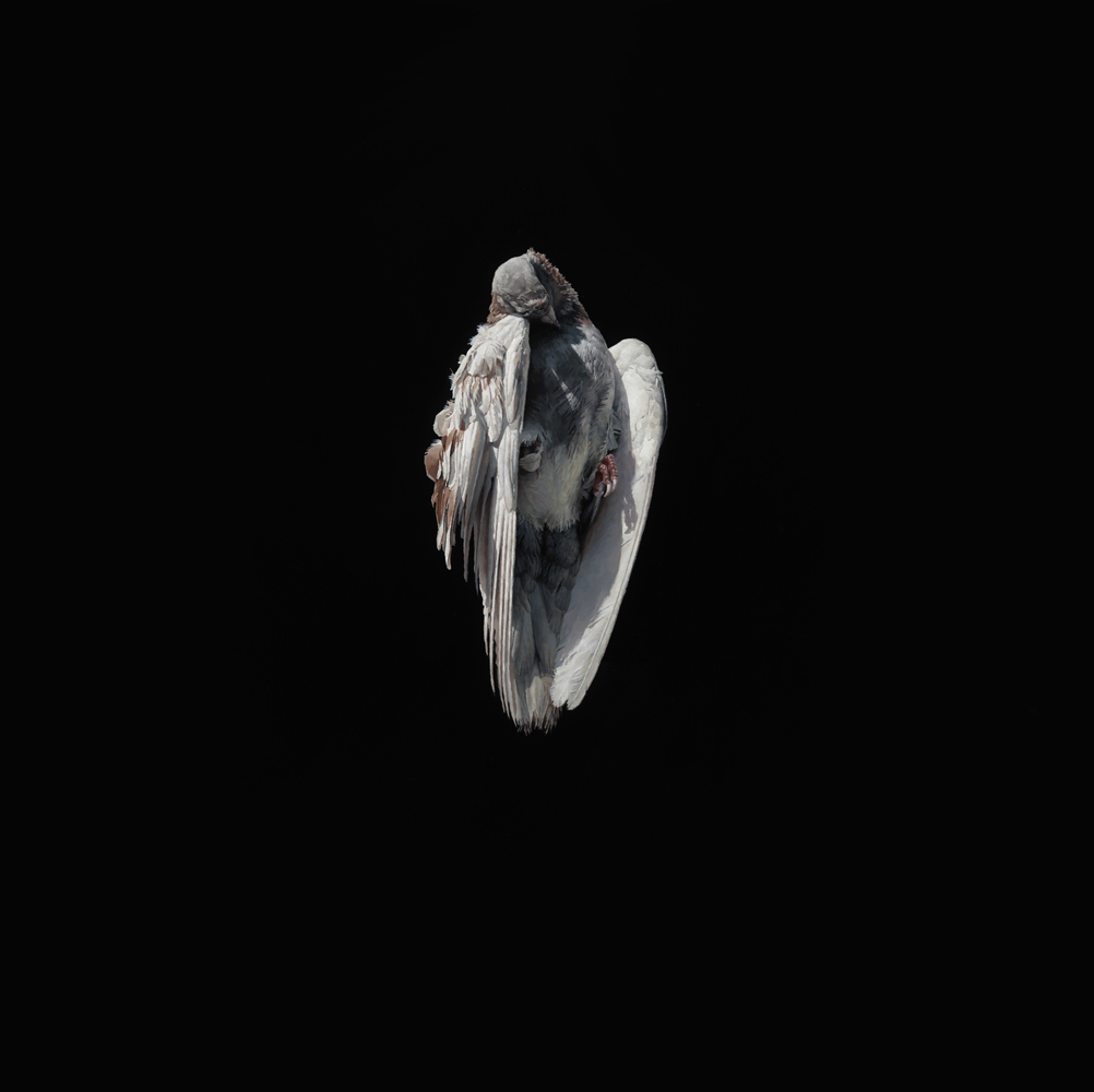 Jeremy  Geddes -  <strong>Miserere 2</strong> (2012<strong style = 'color:#635a27'></strong>)<bR /> oil on board,   17.5 x 17.5 inches (44.45 x 44.45 cm)  22.625 x 22.625 x 1.5 inches, framed