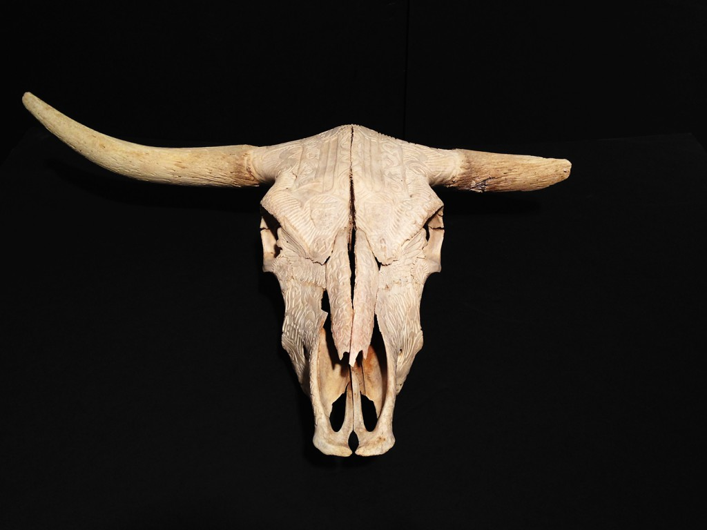 Jesse  Hazelip -  <strong>Hunger Strike</strong> (2013<strong style = 'color:#635a27'></strong>)<bR /> carved bull skull,   7 x 17.5 x 25 inches  (17.78 x 44.45 x 63.5 cm)