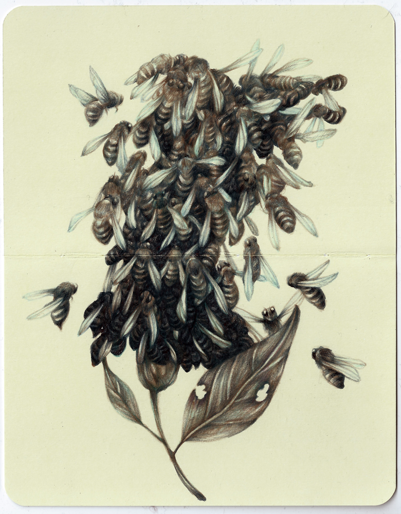 Marco  Mazzoni -  <strong>Famine</strong> (2013<strong style = 'color:#635a27'></strong>)<bR /> colored pencil and ink on moleskine paper,   7 x 5.5 inches  (18 x 14 cm)  11.25 x 9.75 inches, framed
