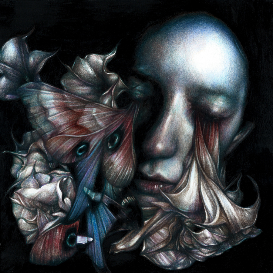 Marco  Mazzoni -  <strong>Iris Flooding</strong> (2013<strong style = 'color:#635a27'></strong>)<bR /> colored pencil on paper,   11.81 x 11.81 inches  (30 x 30 cm)  16.25 x 16.25 inches, framed