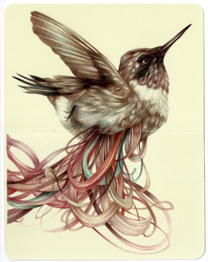 Marco  Mazzoni -  <strong>The Loser</strong> (2013<strong style = 'color:#635a27'></strong>)<bR /> colored pencil and ink on moleskine paper,   7 x 5.5 inches  (18 x 14 cm)  11.25 x 9.75 inches, framed