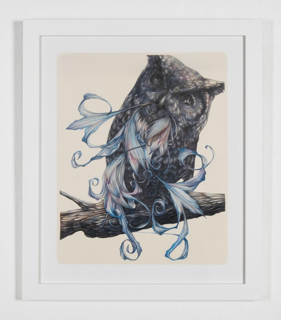 Marco  Mazzoni -  <strong>The Cynic</strong> (2014<strong style = 'color:#635a27'></strong>)<bR /> colored pencils on moleskin paper,   10.24 x 8.26 inches  (26 x 21 cm)