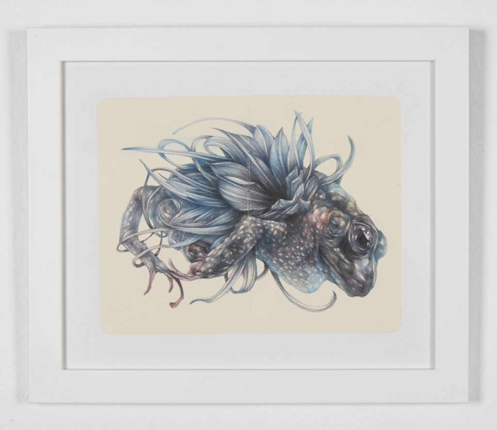 Marco  Mazzoni -  <strong>The Furious One</strong> (2014<strong style = 'color:#635a27'></strong>)<bR /> colored pencils on moleskin paper,   5.51 x 7.09 inches  (14 x 18 cm)