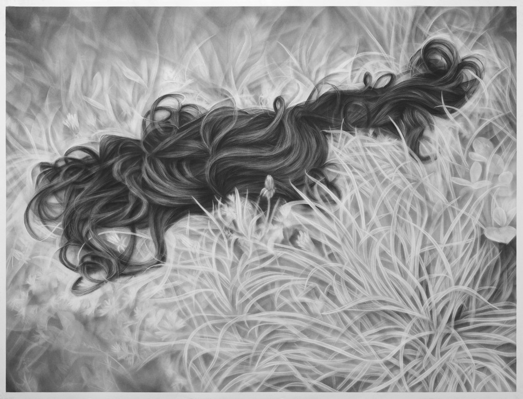 Melissa  Cooke -  <strong>Wig in the Weeds</strong> (2014<strong style = 'color:#635a27'></strong>)<bR /> graphite on paper,   50 x 65 inches  (127 x 165.10 cm)