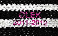 Olek_Video2011-2012.jpg