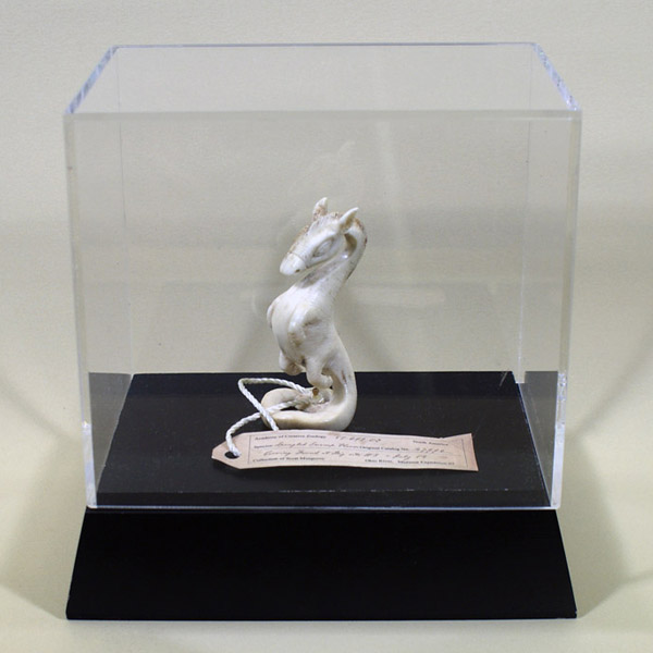 Scott  Musgrove -  <strong>Swamp Horse Carving</strong> (2010<strong style = 'color:#635a27'></strong>)<bR /> bone  3.5 x 1.5 x 1.5 inches   (8.89  x 3.81 s 3.81 cm),   display case = 7 x 7 x 5 inches