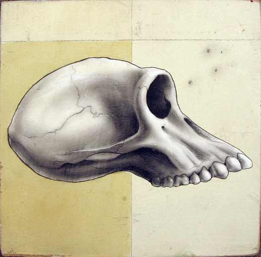 Jeff  Soto -  <strong>Chimpanzee Skull</strong> (2005<strong style = 'color:#635a27'></strong>)<bR /> Acrylic and graphite on Wood  8 x 8 inches