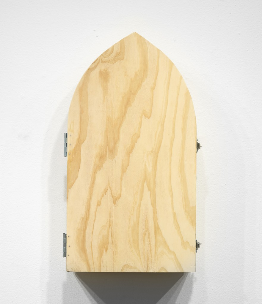 Gary Mellon -  <strong>#17 (front)</strong> (2016<strong style = 'color:#635a27'></strong>)<bR /> carved cow bone and wood in wood box,