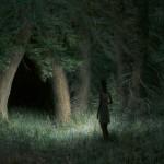 Aron-Wiesenfeld-Night-Grove
