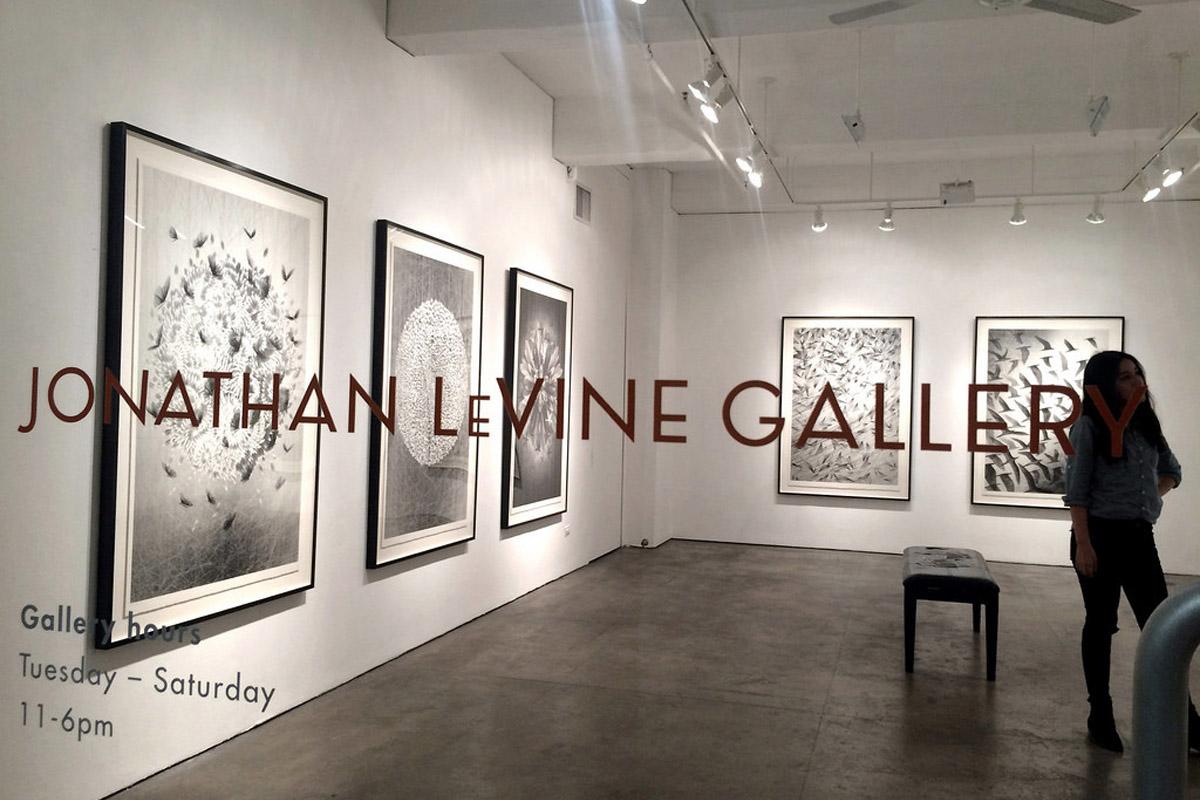 Jonathan-LeVine-Gallery1