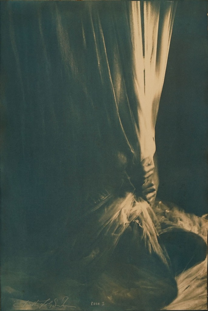 Faith47 -  <strong>Rhea</strong> (2016<strong style = 'color:#635a27'></strong>)<bR /> cyanotype, 23.6 x 15.7 inches, (60 x 40 cm) $2,500