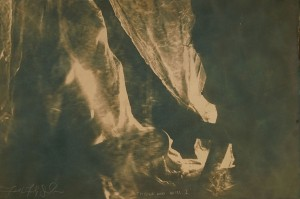 Faith47 -  <strong>Thyone and Ariel</strong> (2016<strong style = 'color:#635a27'></strong>)<bR /> cyanotype, 23.6 x 15.7 inches, (60 x 40 cm) $2,500