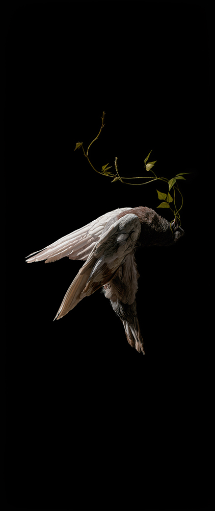 Jeremy  Geddes -  <strong>Labent</strong> (2013<strong style = 'color:#635a27'></strong>)<bR /> oil on board,   29.5 x 12.5 inches  (74.93 x 31.75 cm)